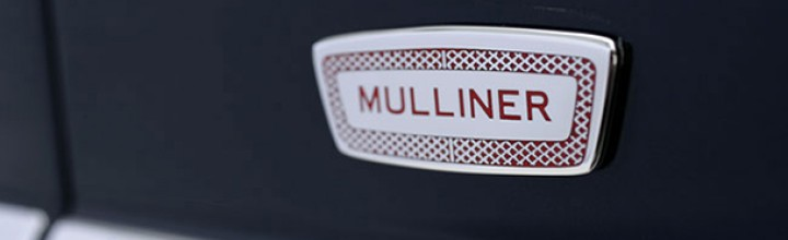Car Emblems for Branding Limo Service Company
